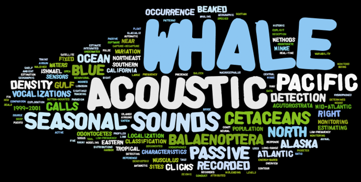 Acoustics Wordle